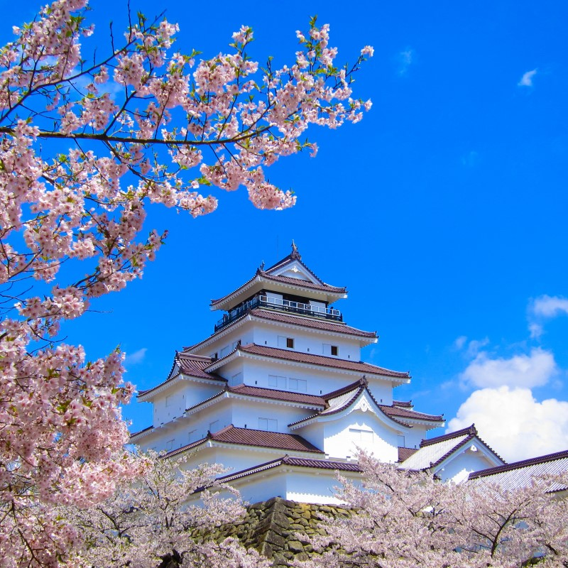 tsurugajo-spring_ss